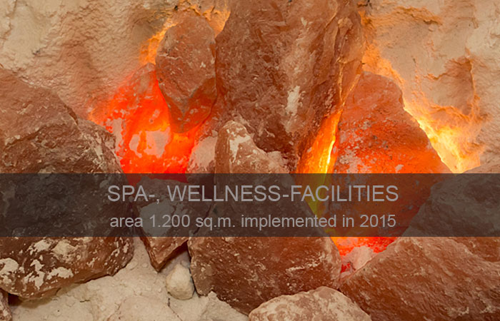 SPA-, Wellness-facilities ❝Globino❞